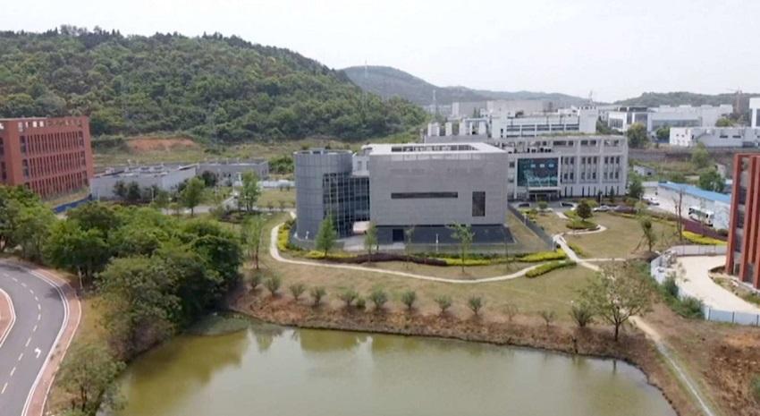 """""""covid-19 creato in laboratorio"""": laboratorio di wuhan"""